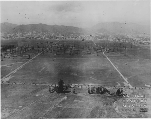 Aerial view between Highland Avenue and La Brea Avenue, circa 1920. [Seaver Center Collection; Los Angeles Museum of Natural History]
