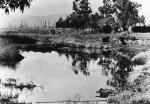 La Brea Tar pits and the old Hancock Ranch House, circa 1910. In the distance to the left are the Hancock oil fields and the Hollywood Hills.